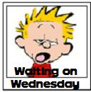 calvin-waiting-on-wednesday1